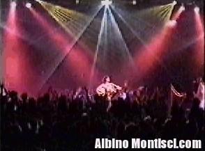 albino9